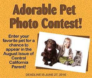 Pet-Photo-Contest-Tile-Ad
