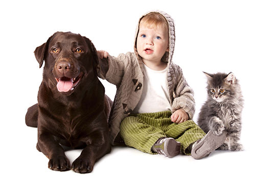 Toddler-with-Pets-530